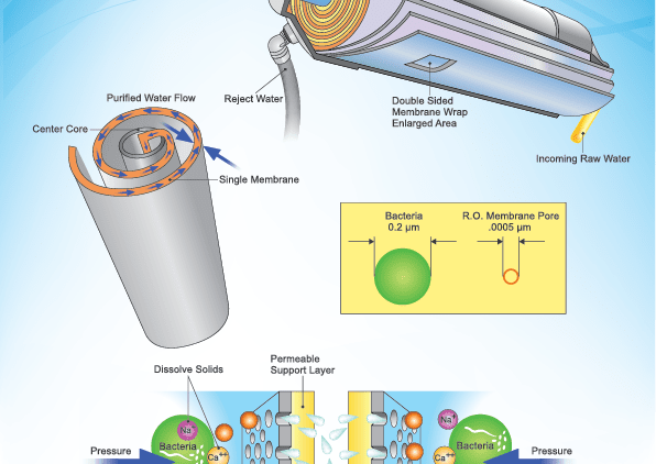 Bacteria and Reverse Osmosis
