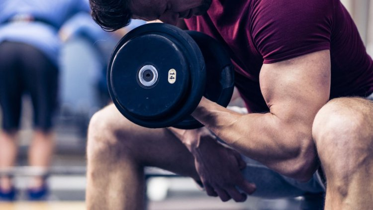 Tips for How to Build Muscle - Building Muscle Workouts